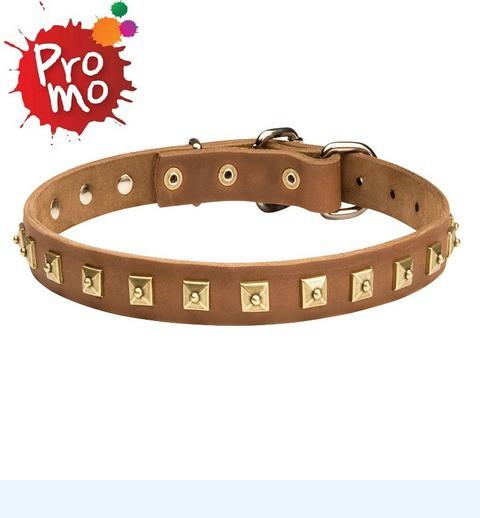 Collier cuir luxe pour chien Trésors des pyramides