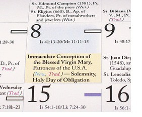 Holy days of obligation feature image