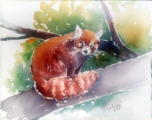 Red Panda watercolor painting by Christie Michelsen