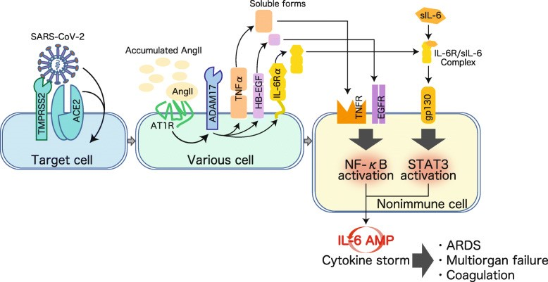 Vai trò của corticosteroid đối với các ca COVID-19 nặng